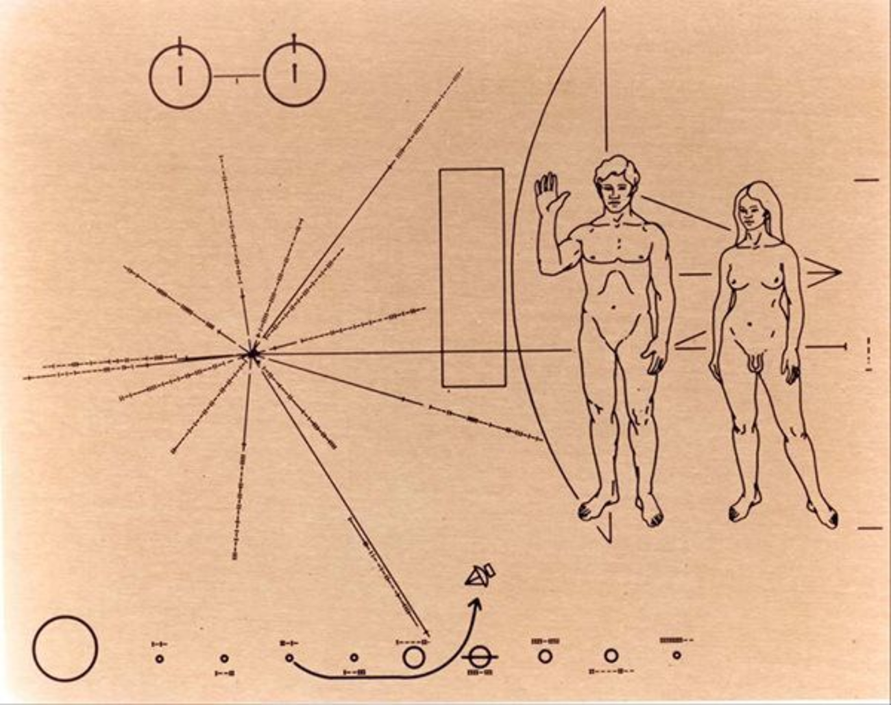 The Pioneer plaque with transgender humans